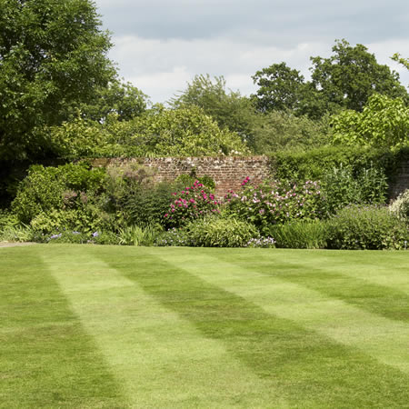 Grass lawn with stripes in Greater Manchester