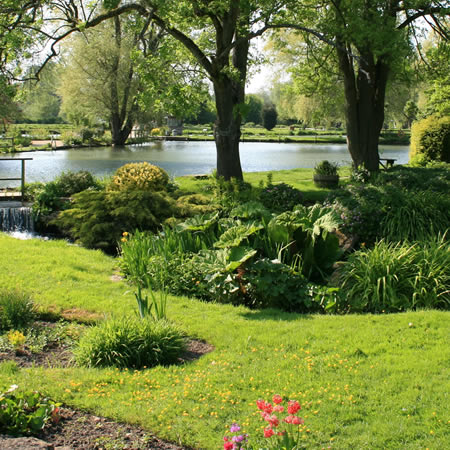 Landscaped garden area with grass, flowers and pond